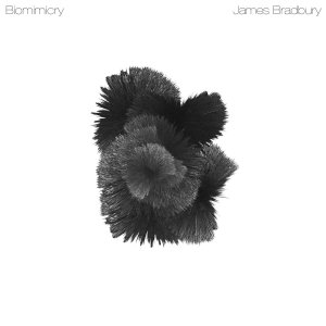 biomimicy-cover